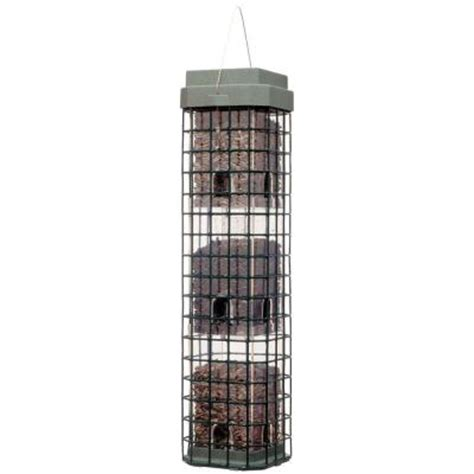 squirrel cage fan home depot pet 4 lb bird even seed squirrel dilemma 104