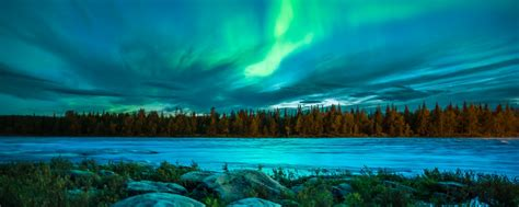 northern lights sit up bench situp benches sit up bench dimensions www pixshark com