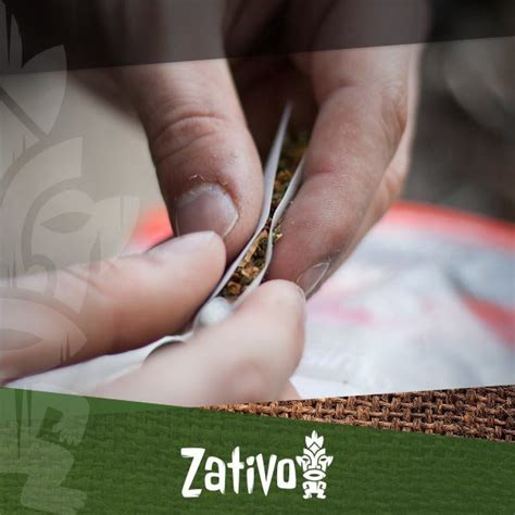 best way to roll a joint how to roll a joint zativo