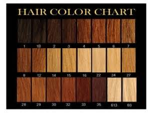 strawberry hair color chart special effects makeup classes raleigh nc dfemale dfemale