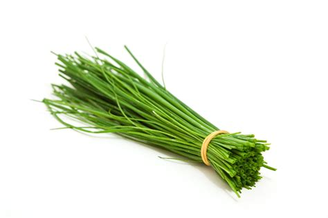 Kitchen Design Interior Decorating by Chives A Versatile Herb Easy To Use And Grow Your Own
