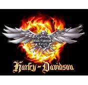 Auto Review Top Harley Davidson Logo
