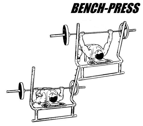 bench press strength test bench press barbell bench press exercise