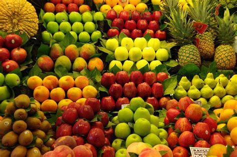 banchi frutta al via la formazione degli insegnanti per frutta nelle