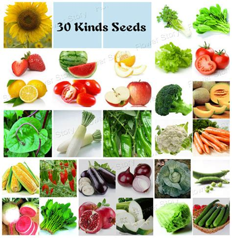 Kitchen Garden Seeds Coupon Code Aliexpress Buy 30 Different Vegetables And Fruits