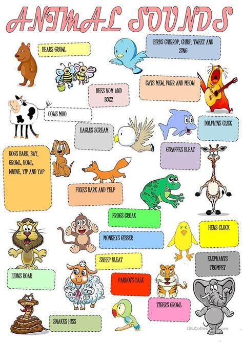 animals sounds worksheet  esl printable worksheets