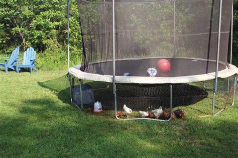 backyard chicken pens covert chicken coop modern homesteading mother earth news