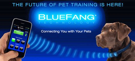 new technology for dogs new high tech pet patent apps promise big changes for pets