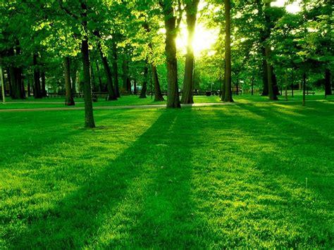 imagenes verdes naturales paisajes verdes paisajes maravillosos