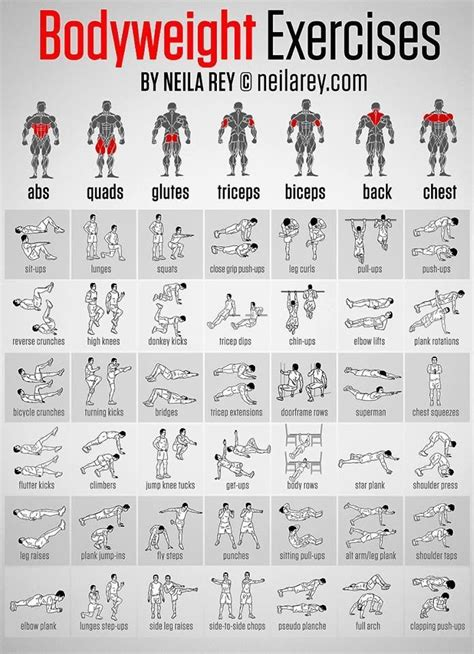 best 25 s fitness exercises ideas on mens