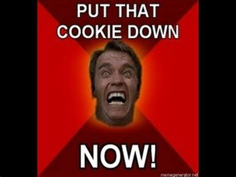 Do You To Put A Downpayment On A House by Quot Put That Cookie Quot Arnold Schwarzenegger Remix