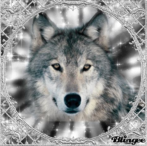 Silver Wolf silver wolf picture 117388074 blingee