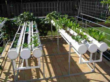 diy hydroponic gardening ideas     images