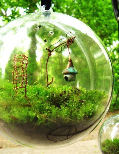 17 best images about beautiful of terrariums on pinterest