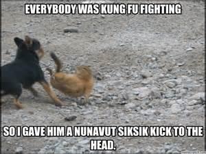 Fighting Meme - everybody was kung fu fighting