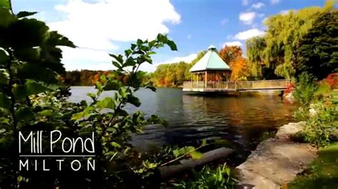 Canon Ef S 10 18mm F4 5 5 6 Is Stm glidecam hd 2000 mill pond canon 60d canon ef s 10