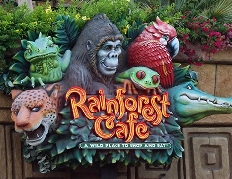 rainforest cafe  downtown disney | rainforest cafe in