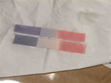 Make Litmus Paper - neutral litmus paper and how you can make substances