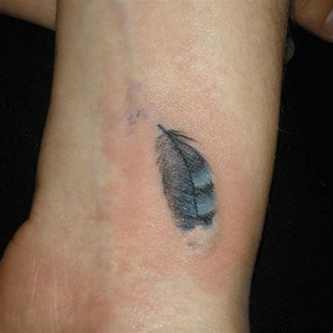tattoo feather jay best 25 blue jay tattoo ideas on pinterest chickadee