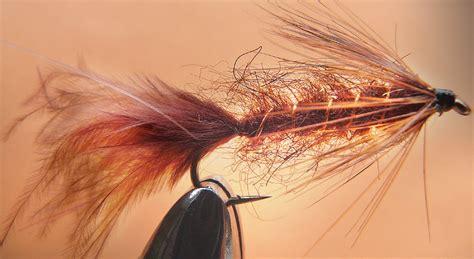 brown leech pattern leech dark brown aleka sports