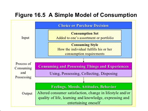 Framework Of Business Mba Notes by Schiffman16 Ppt Best Ppt Decision Making1