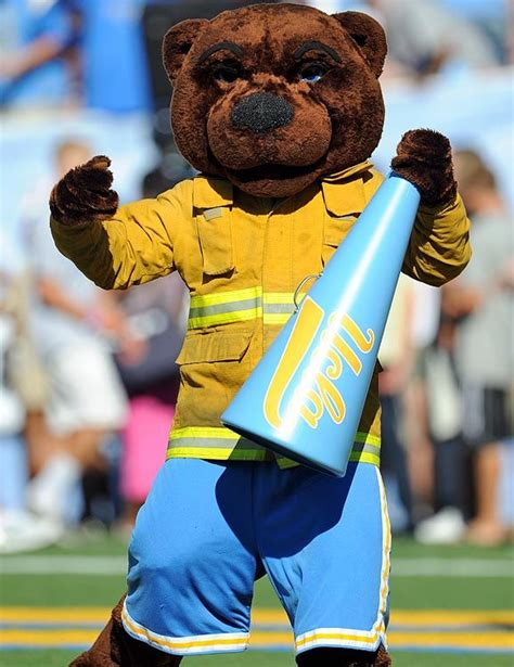 Ucla Mba Ms Computer Science by 83 Best College Mascots Pac 12 Images On