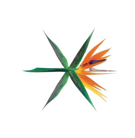 exo what u do lyrics exo what u do hangul romanization english