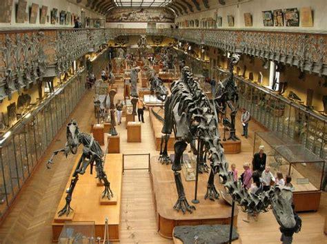 amsterdam museum of natural history museo de historia natural de londres 7 cosas que ver