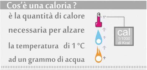 calcolo delle calorie degli alimenti calorie degli alimenti il fabbisogno giornaliero 233 spiegato