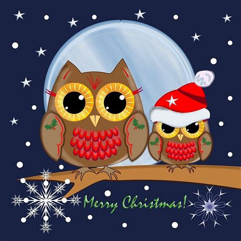 christmas owl pictures merry owl