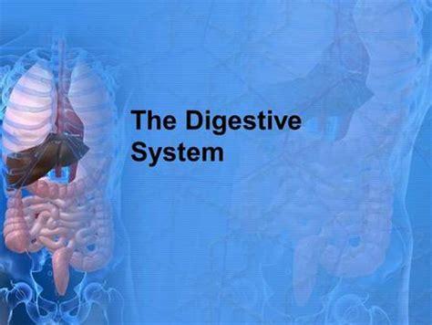 general anatomy   digestive system  video