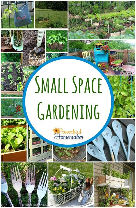small space gardening ideas small space gardening 20 great ideas proverbial homemaker