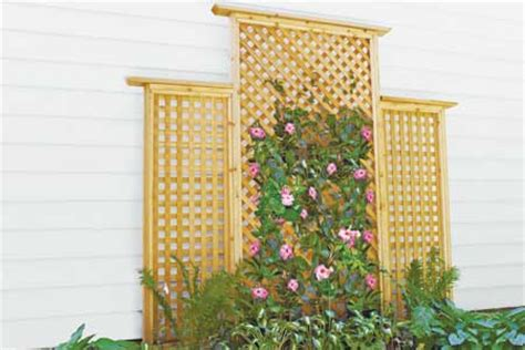 house trellis designs download trellis plans this old house plans free