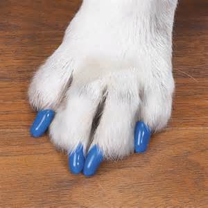 soft claws nail caps protect homes from pet claw scratches