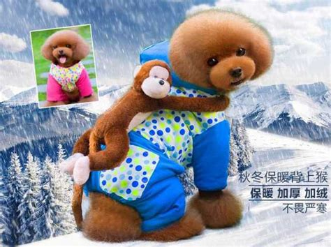 onesies for dogs winter weather onesie for dogs comes with imitation curious george petslady