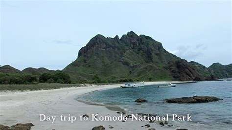 boat trip around komodo island day trips to komodo national park