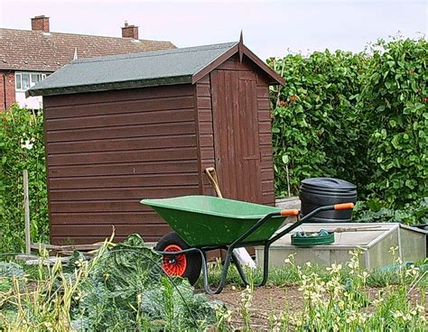 Shed Definition Verb by Shed Wiktionary