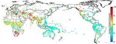 language pattern in europe probing the deep history of human genes and language