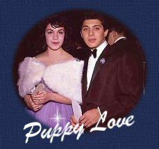 puppy paul anka lyrics puppy sung by paul anka 1960
