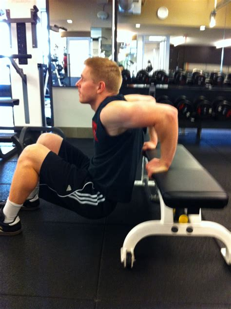 bench dips for chest train daly