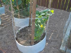 Chicken Wire Trellis 301 moved permanently