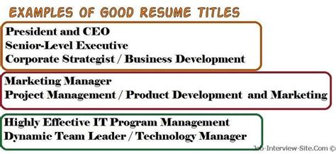Resume Title Exles Resume Title Exles Of Resume Titles