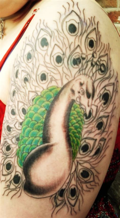 tattoo designs peacock peacock tattoos designs ideas and meaning tattoos for you