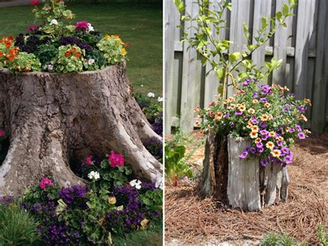 How To Decorate Around A Tree Stump 3 ways to decorate tree stumps in garden interiorholic