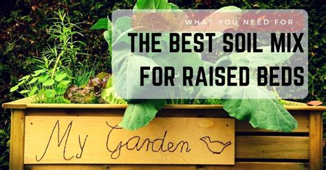 raised bed soil mix best soil for vegetable garden square foot gardening