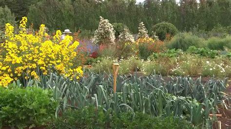 Home Grown An Australian Vegetable Garden Youtube Australian Vegetable Gardening