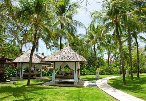Landscape Rock Ocala Fl Saras Gardens Plants Exotics And Tropicals Ocala Fl Rock