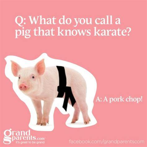 Pork Chop Meme - what do you call a pig that knows karate a pork chop