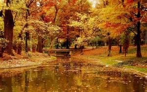sound leaves falling pixdaus