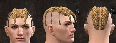 gw2 human hairstyles gw2 new hairstyles and faces for path of fire dulfy